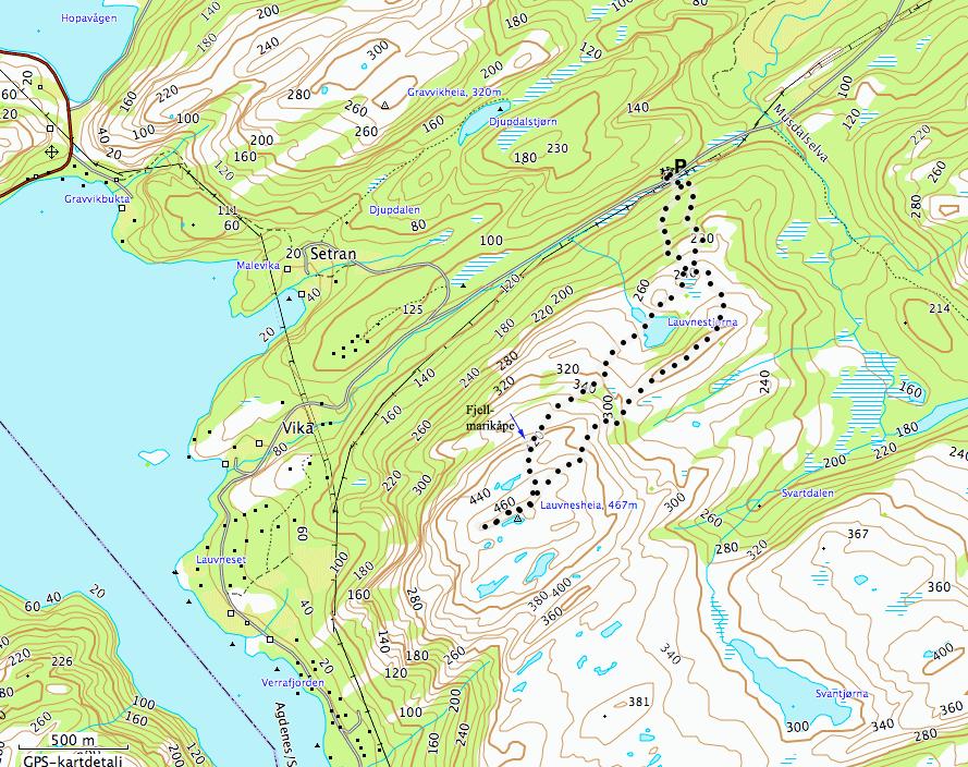 Lauvneskart